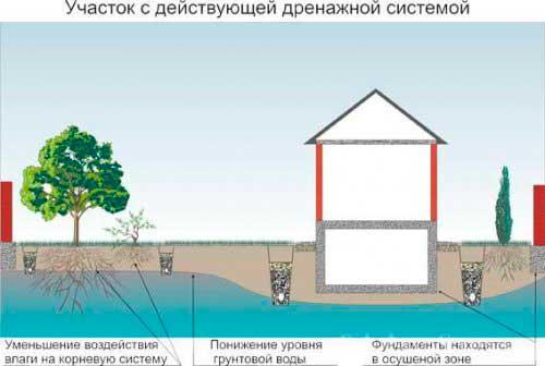 vysokiy-uroven-gruntovykh-vod-kakoy-fundament-sdelat